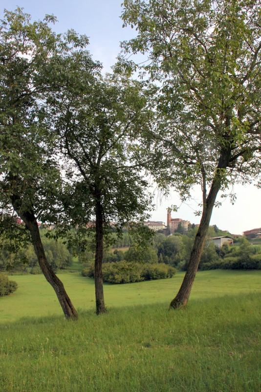 1-gmg-montechiaro-2016-057-001